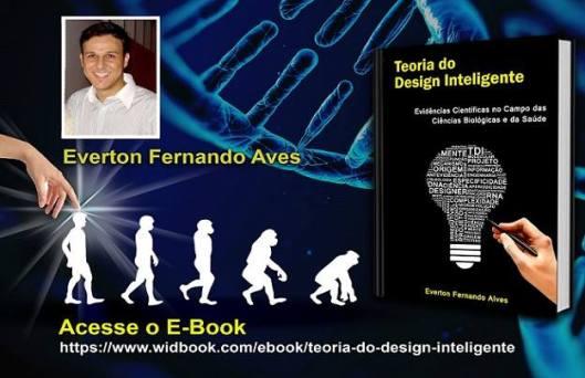 Everton_Fernando_Alves