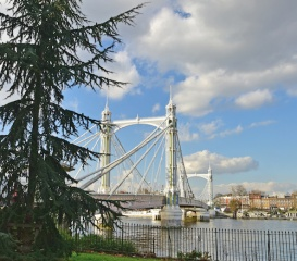 Albert Bridge across the Thames in London viewed from Battersea Park